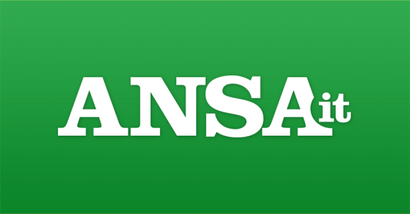 ansa-700x366-precomposed.png
